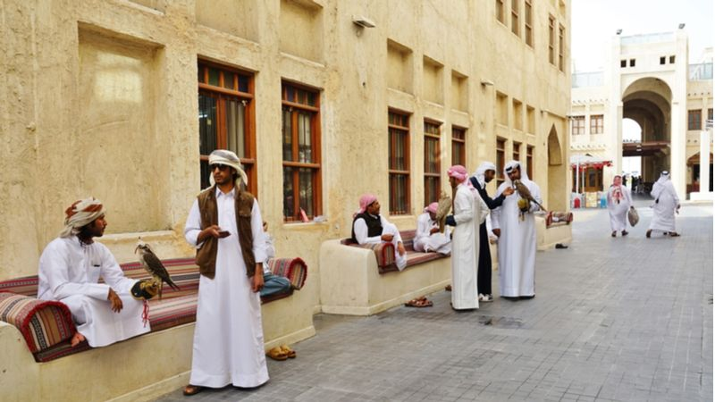 Falcon Souq Is Among The Largest Market in Qatar For Falcons and Their Accessories